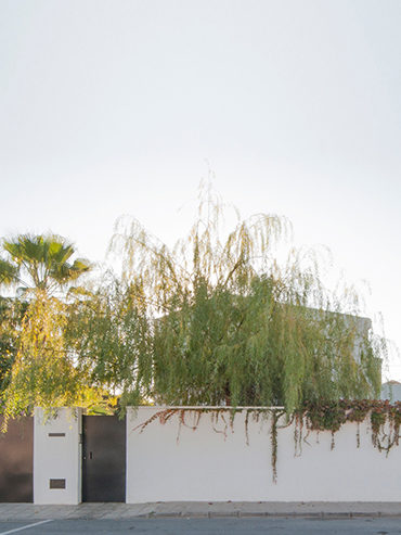 Reforma y ampliación de la vivienda del Sauce en Alicante<br>Renovation and expansion of the willow house